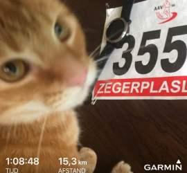 159e Zegerplasloop – 15KM en tevreden