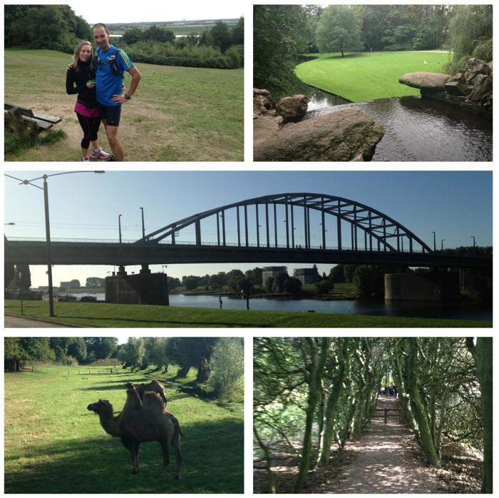 Duurloop met Merit met Park Sonsbeek, de John Frostburg, kamelen onderweg en de 'overhangende' bomen in Mariëndaal