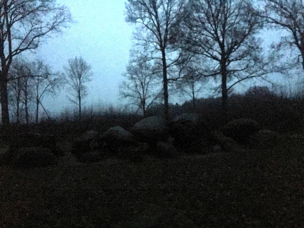 Hunnebed D52 in het donker.. en ook nog koud!
