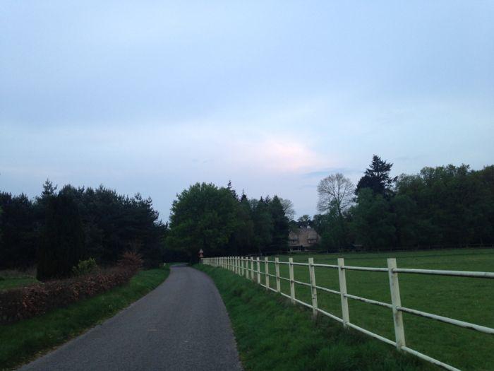 Bijna in het bosrijke gebied bij Loenen