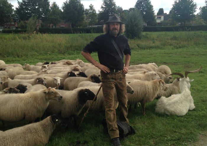 De schaapsherder met zijn kudde