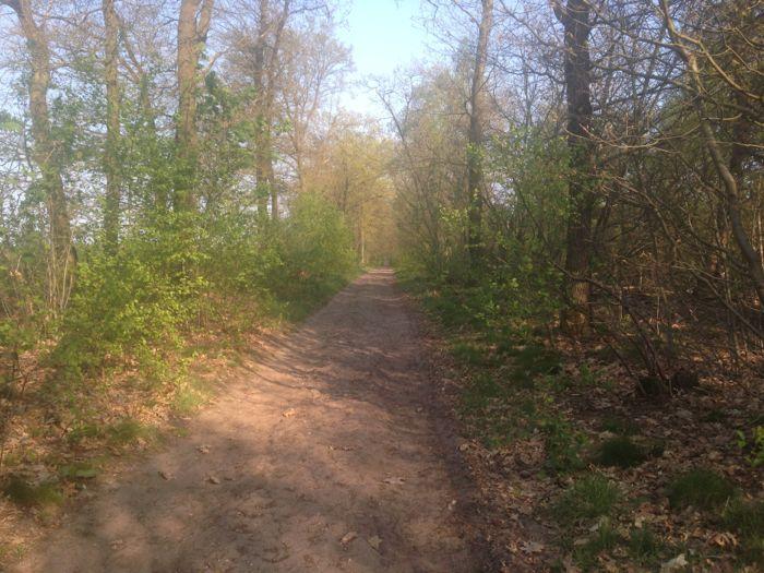 Parallel lopen aan de spoorlijn richting Arnhem brengt je soms op vreemde (ruiter)paden
