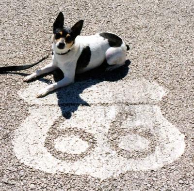 Route 66... spreekt toch bij vele tot de verbeelding