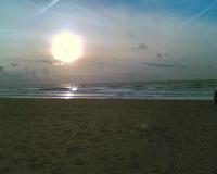 Strand van Schevingen