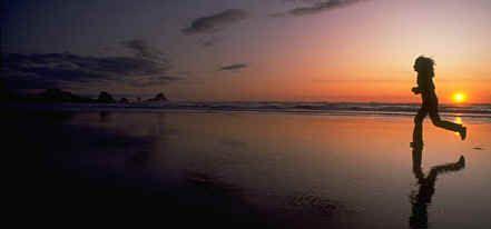 20090426-BeachRun.jpg