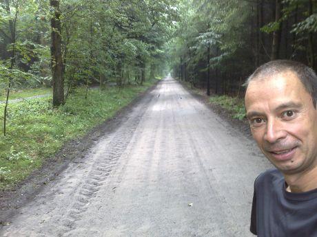 20090724-bosweg-drenthe.jpg