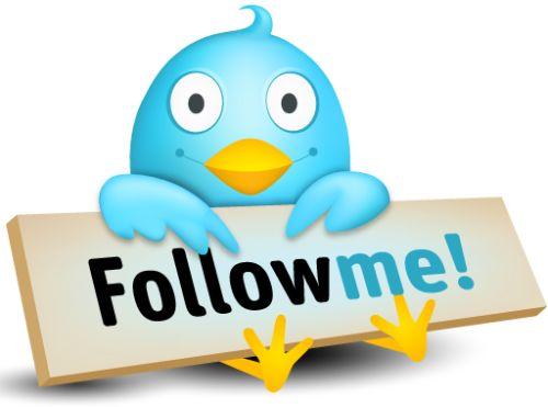 20091208-twitter-follow.jpg